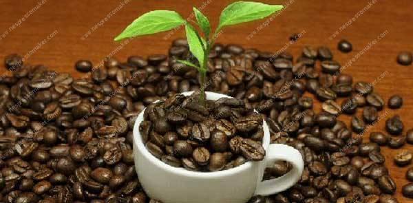 Recycling-Coffee
